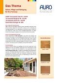 Schutz-Pflege-Reinigung-Holzterrassen