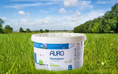 AURO-Plantodecor-Gebinde